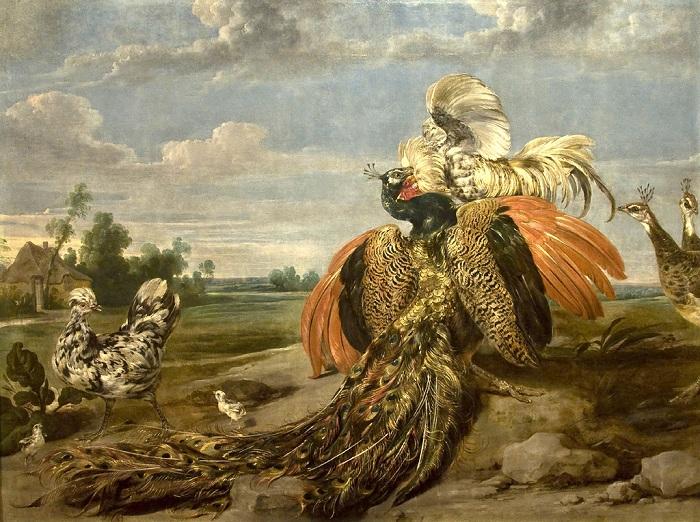 «Бой павлина с петухом». Музей Галуста Гюльбенкяна. Лиссабон. Автор: Пауль де Вос.